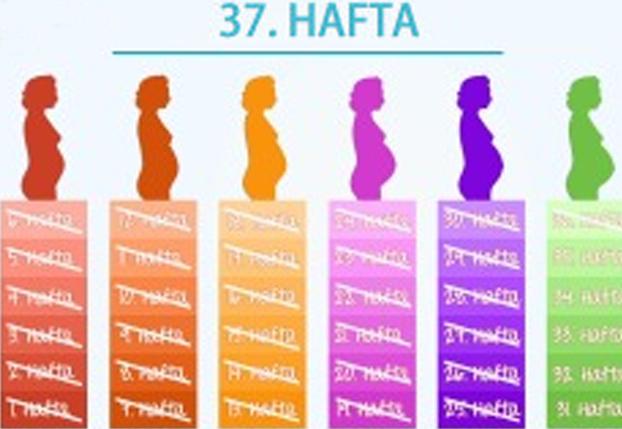37. Hafta - Müjde… Bebeğiniz artık prematurite sınırını aştı.